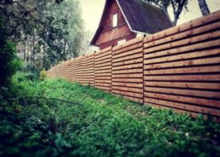 medines tvoros-min