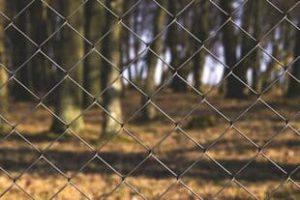 tinkline-tvoros-30